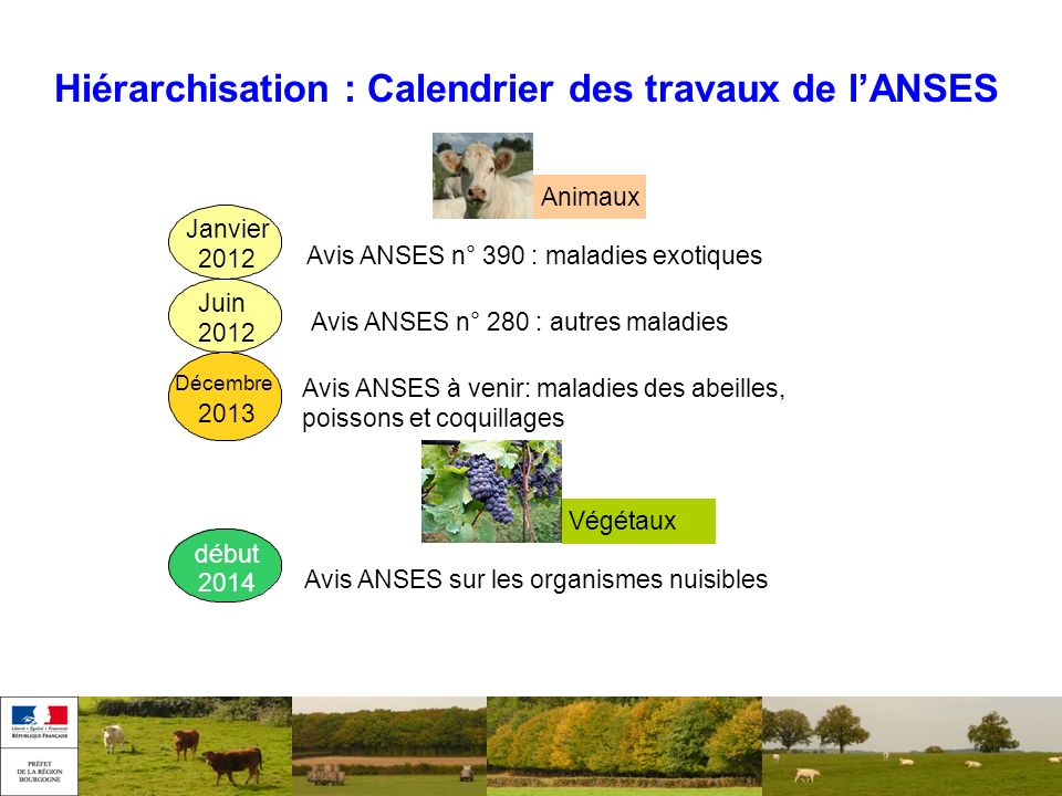 Hiérarchisation : Calendrier des travaux de l'ANSES