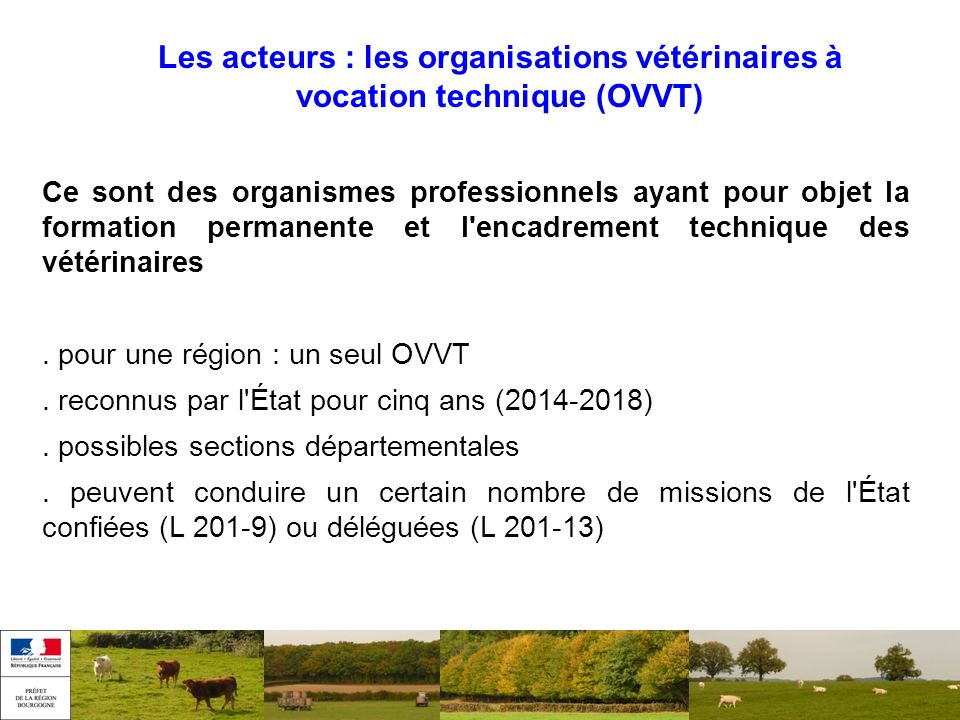 Les acteurs : les organisations vétérinaires à vocation technique (OVVT)