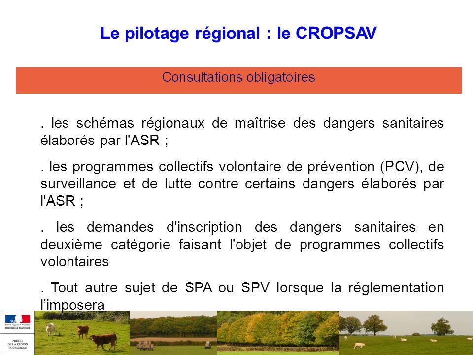 Le pilotage régional : le CROPSAV