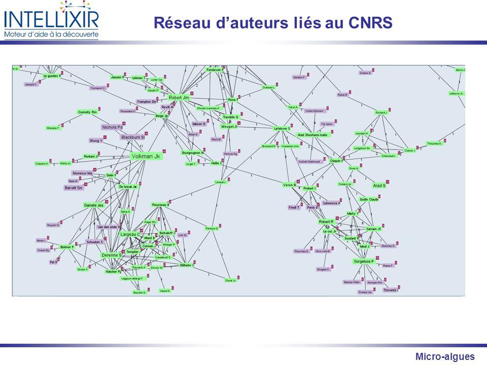 Réseau d'auteurs liés au CNRS