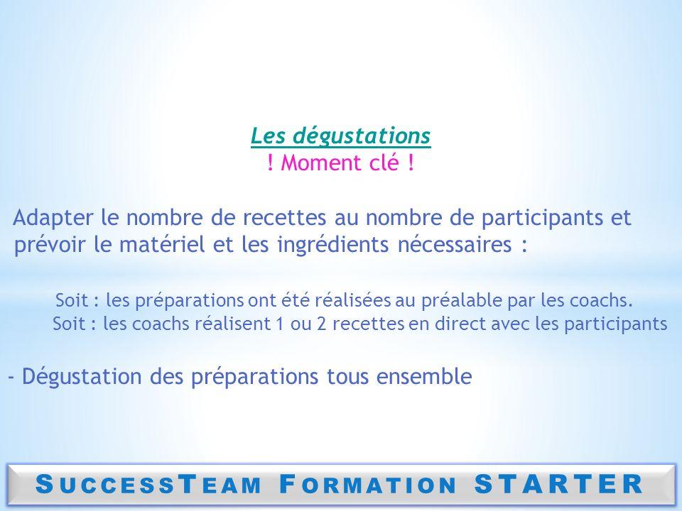 SuccessTeam Formation STARTER