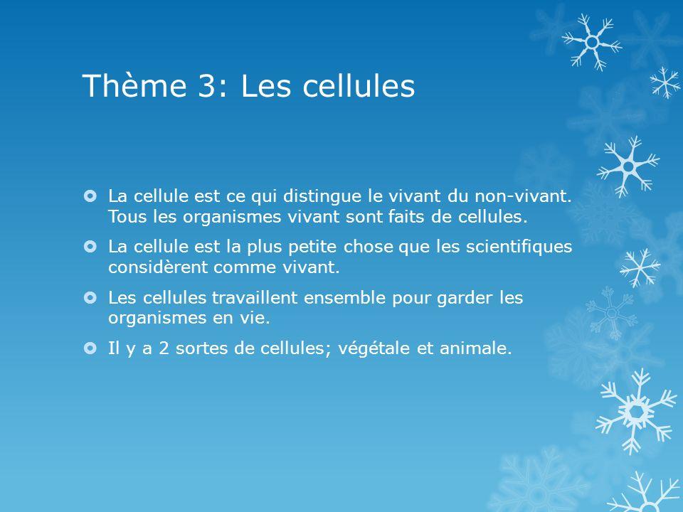 Thème 3: Les cellules La cellule est ce qui distingue le vivant du non-vivant. Tous les organismes vivant sont faits de cellules.
