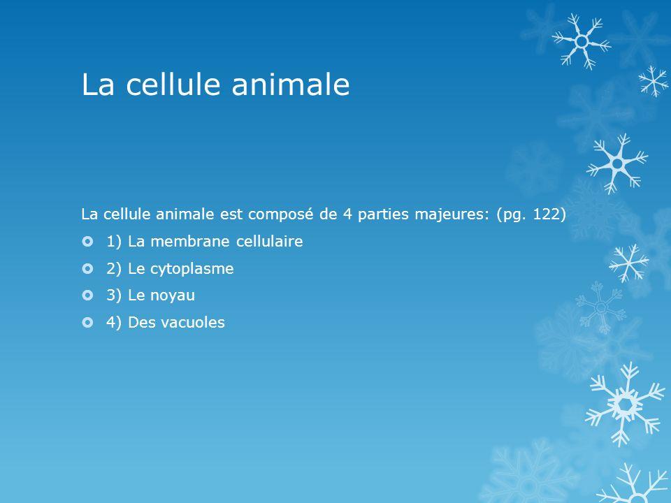 La cellule animale La cellule animale est composé de 4 parties majeures: (pg. 122) 1) La membrane cellulaire.