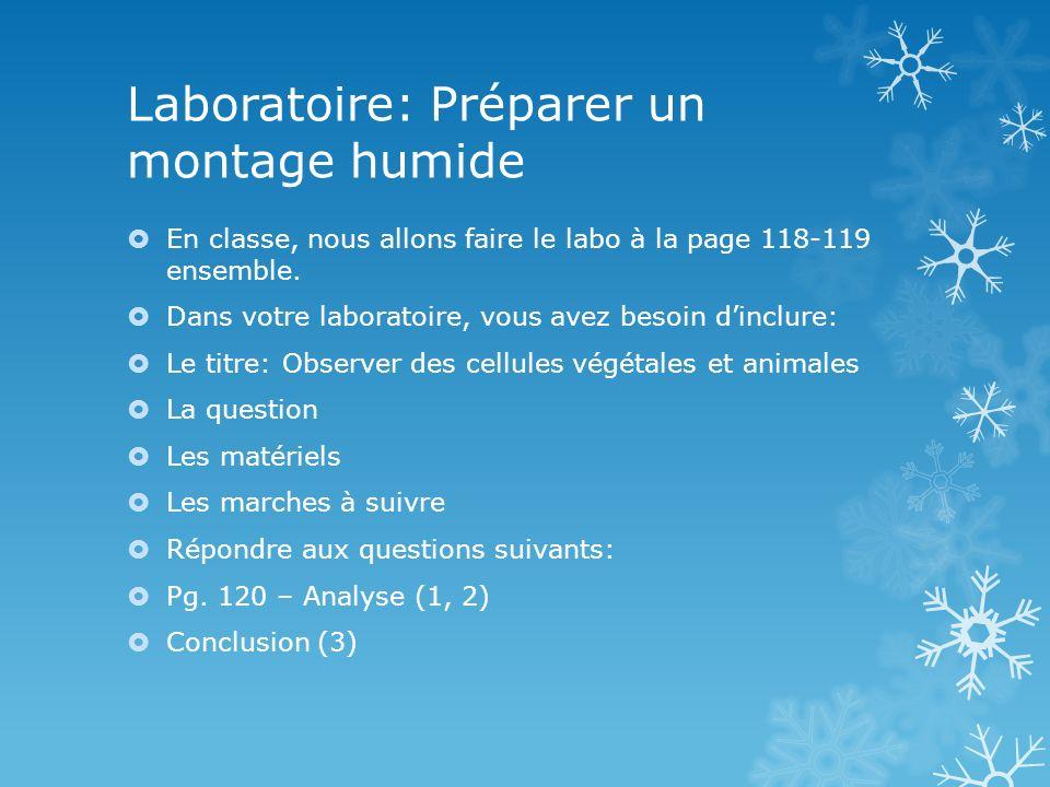 Laboratoire: Préparer un montage humide