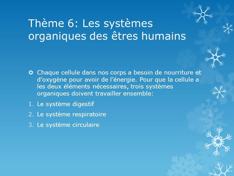 Thème 6: Les systèmes organiques des êtres humains