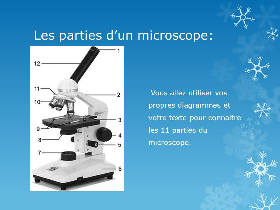 Les parties d'un microscope: