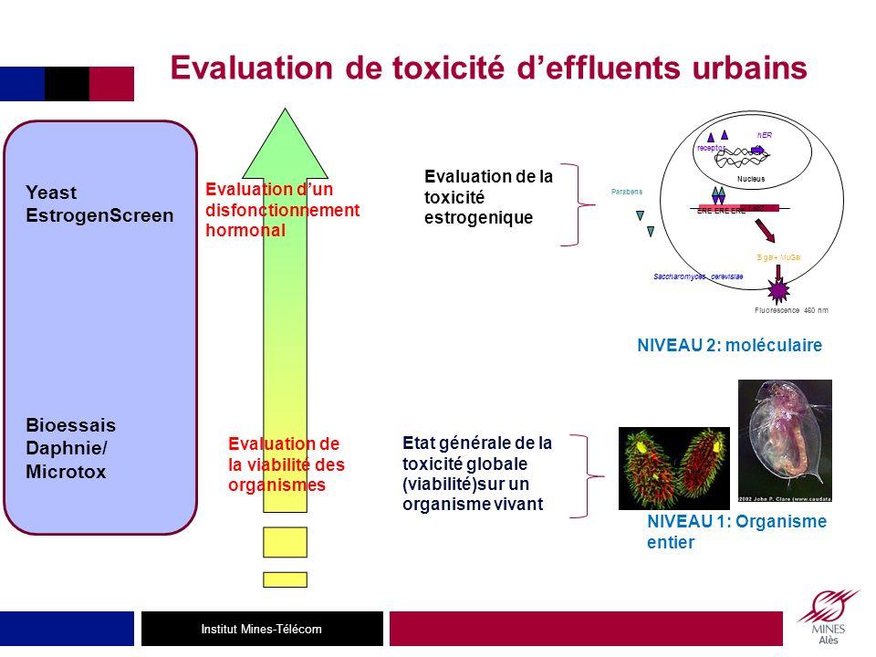 Evaluation de toxicité d'effluents urbains