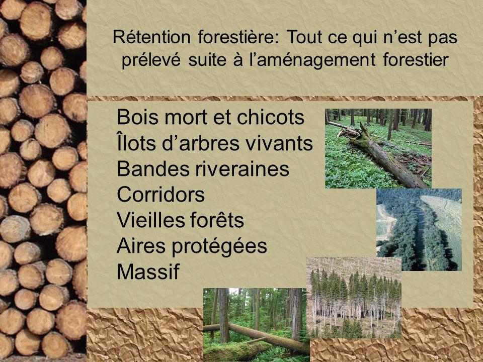Îlots d'arbres vivants Bandes riveraines Corridors Vieilles forêts