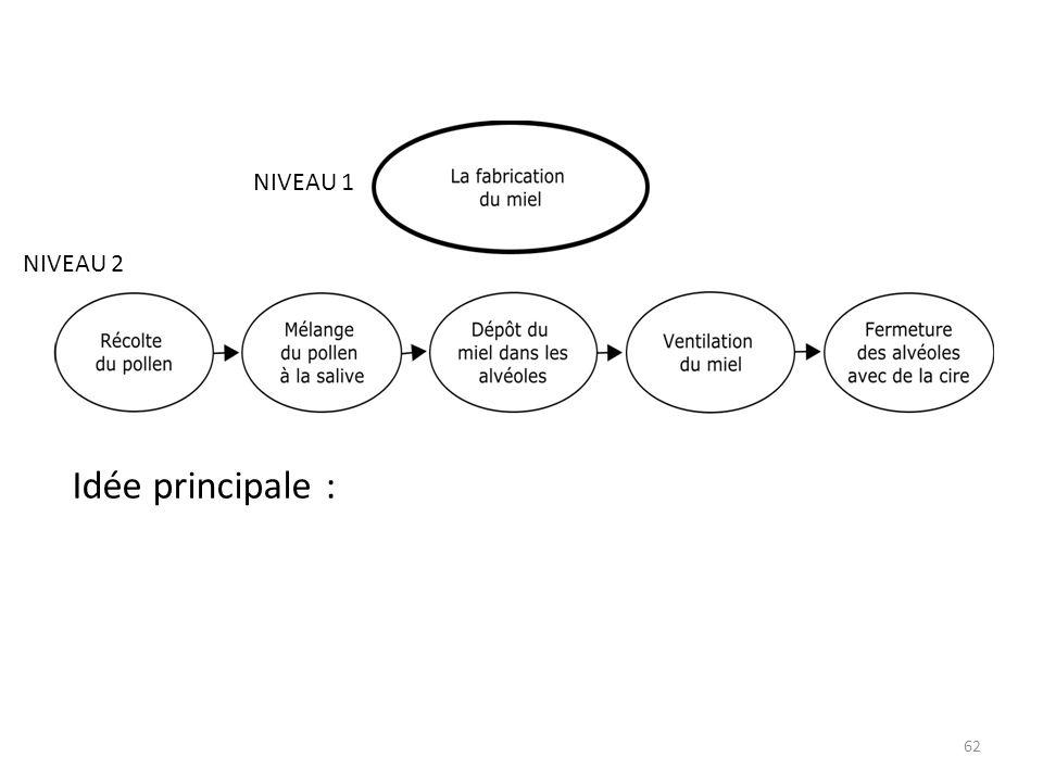 NIVEAU 1 NIVEAU 2 Idée principale :