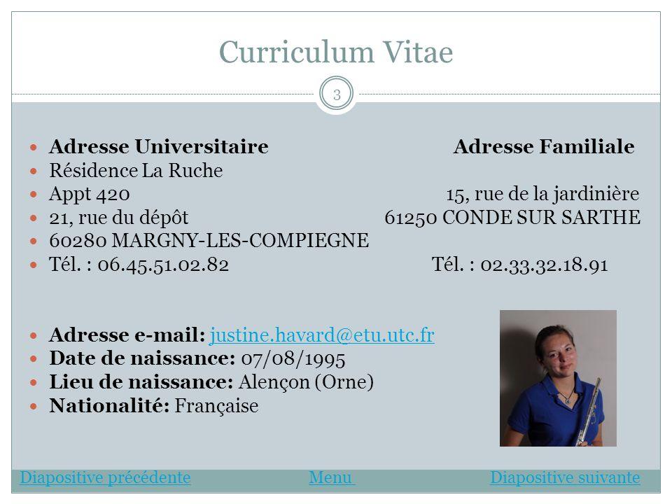 Curriculum Vitae Adresse Universitaire Adresse Familiale