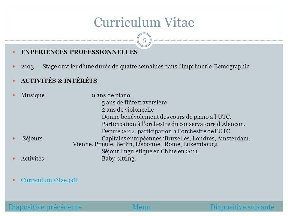 Curriculum Vitae Diapositive précédente Menu Diapositive suivante