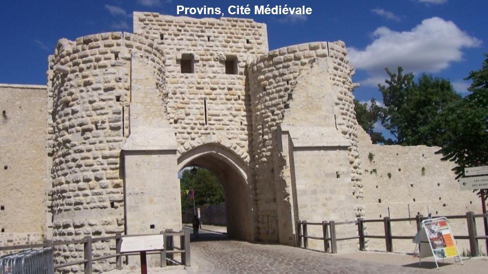 Provins, Cité Médiévale