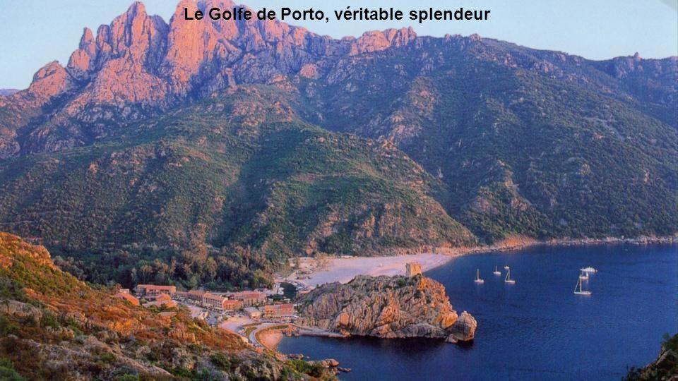Le Golfe de Porto, véritable splendeur