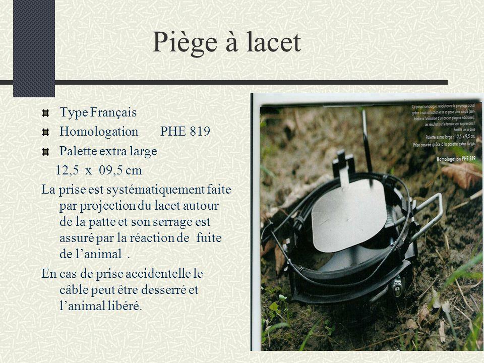 Piège à lacet Type Français Homologation PHE 819 Palette extra large