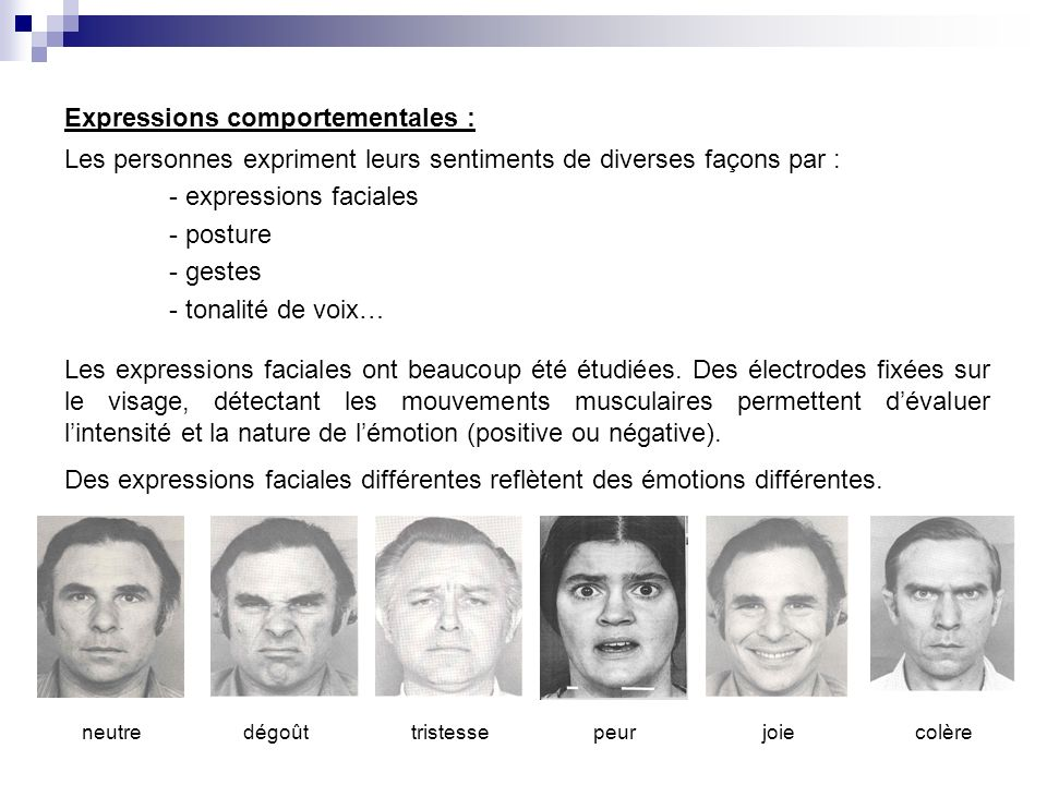 Expressions comportementales :