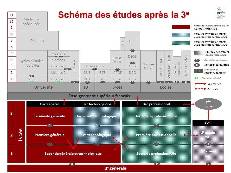 Schéma des études après la 3e Enseignement supérieur français
