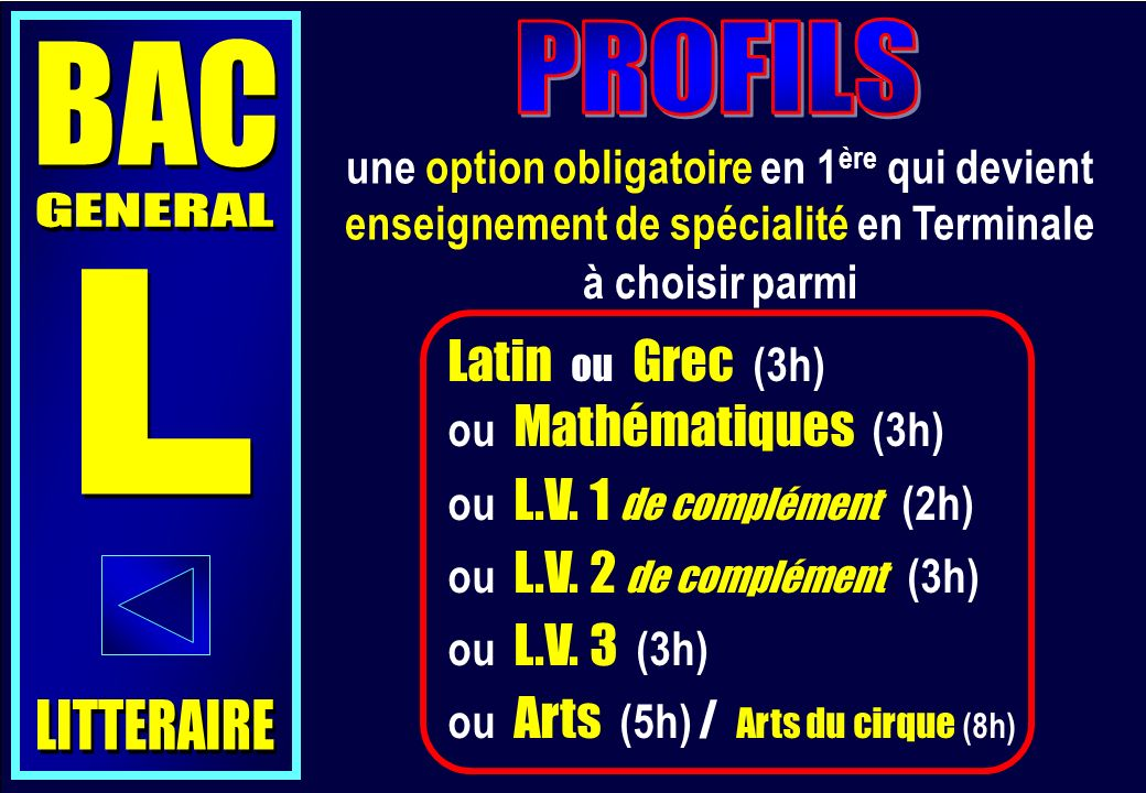 PROFILS BAC GENERAL L Latin ou Grec (3h) LITTERAIRE