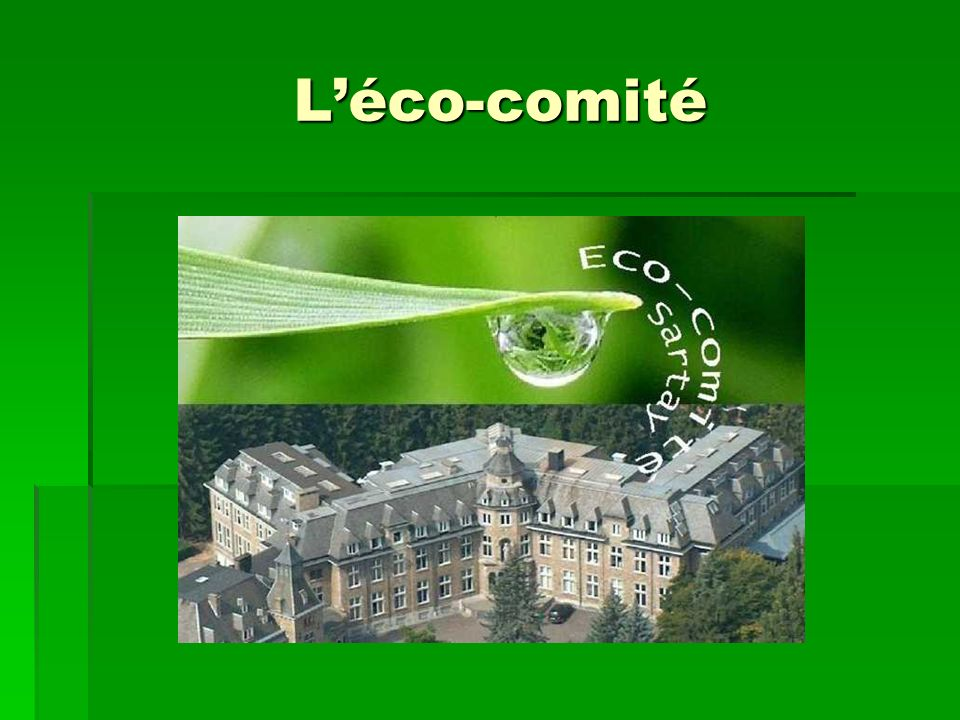L'éco-comité