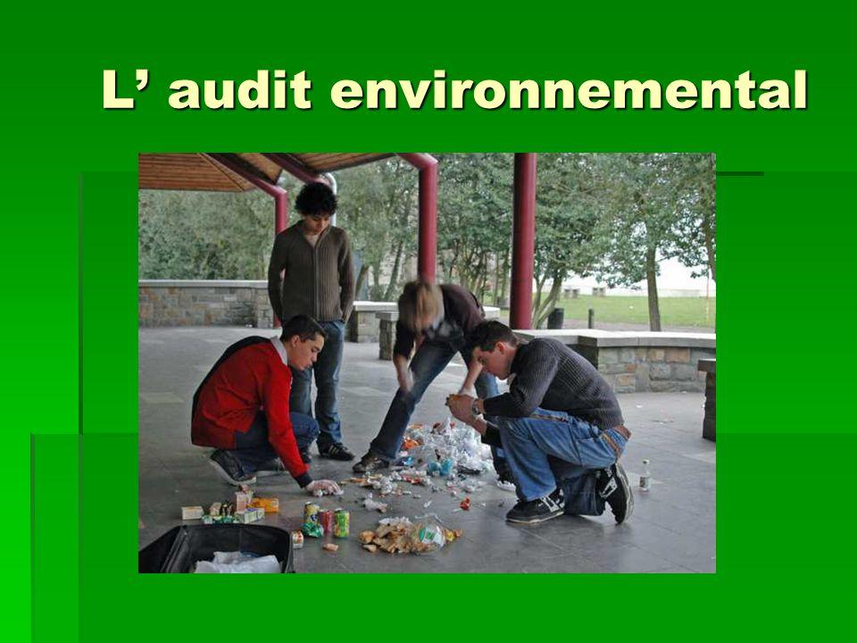 L' audit environnemental