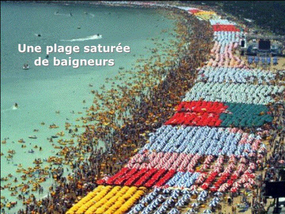 Une plage saturée de baigneurs