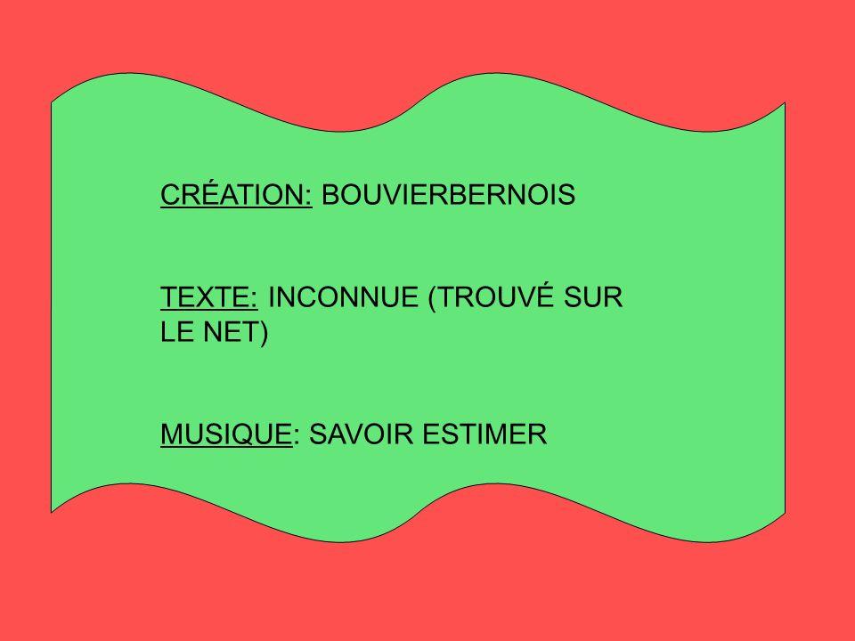 CRÉATION: BOUVIERBERNOIS