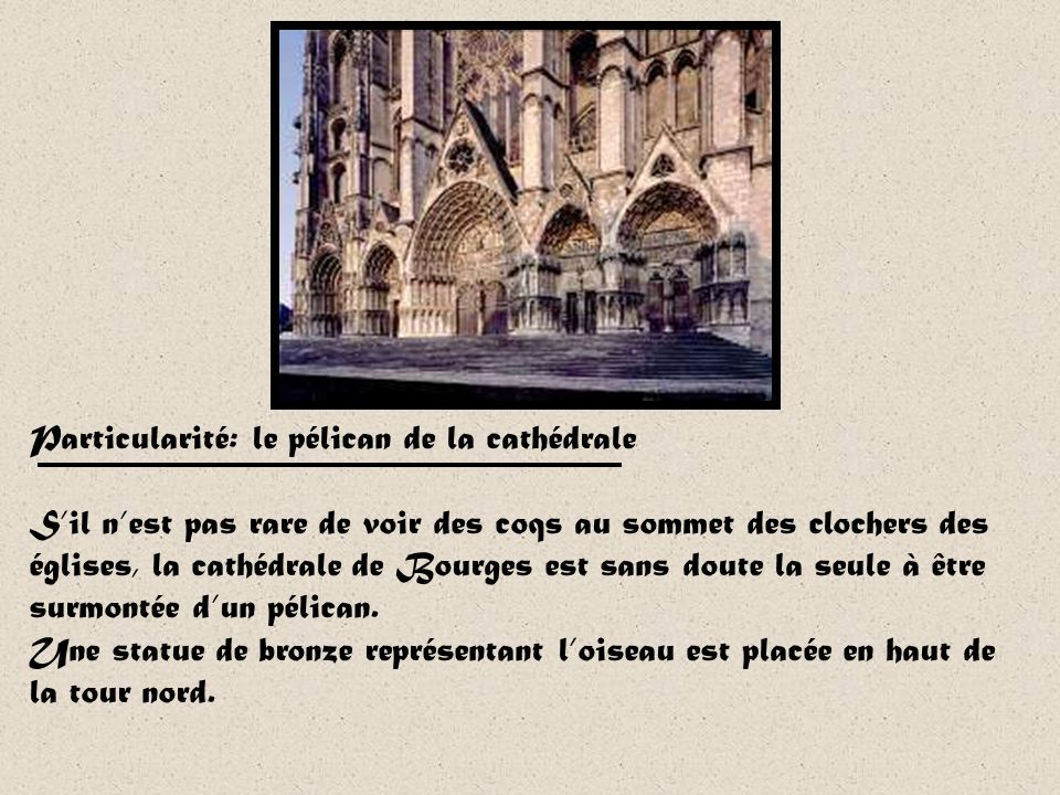 Particularité: le pélican de la cathédrale