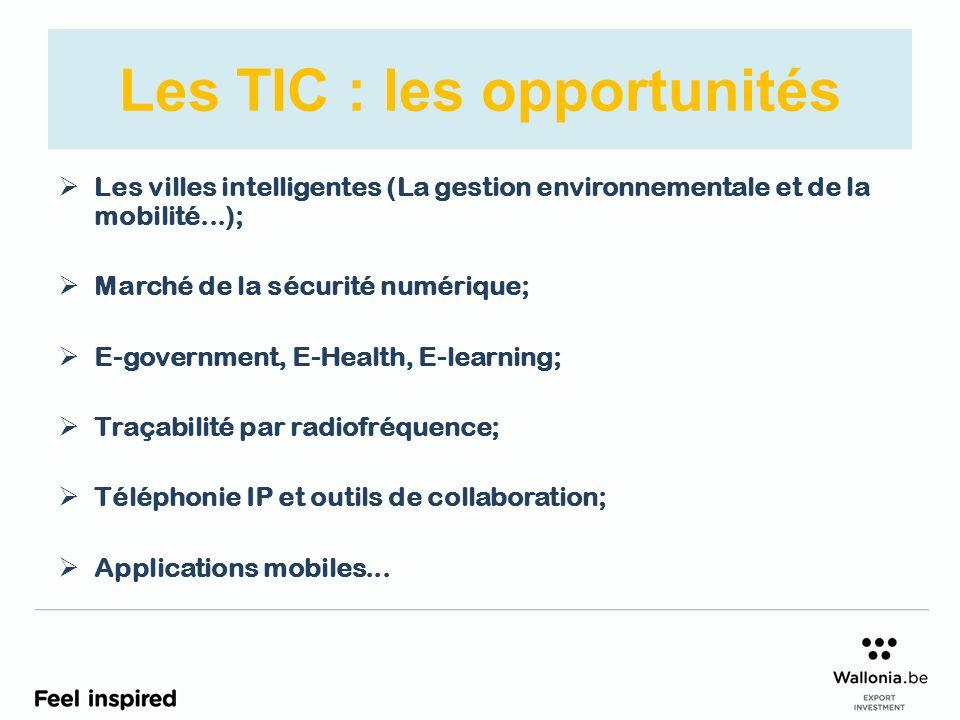 Les TIC : les opportunités