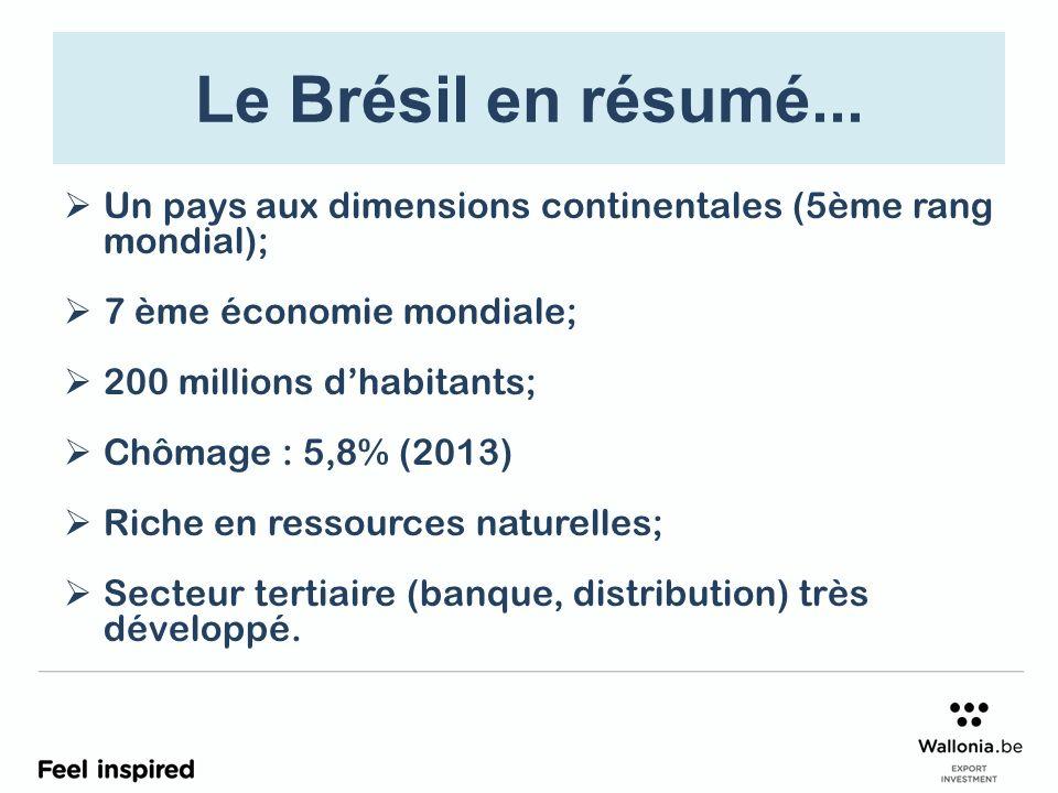 Le Brésil en résumé... Un pays aux dimensions continentales (5ème rang mondial); 7 ème économie mondiale;