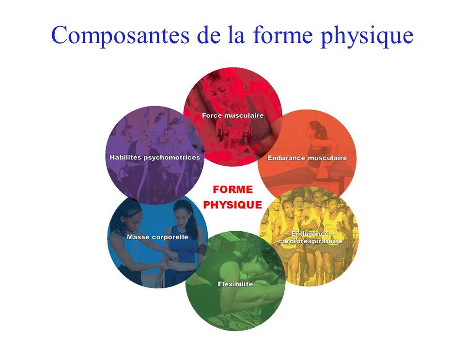 Composantes de la forme physique