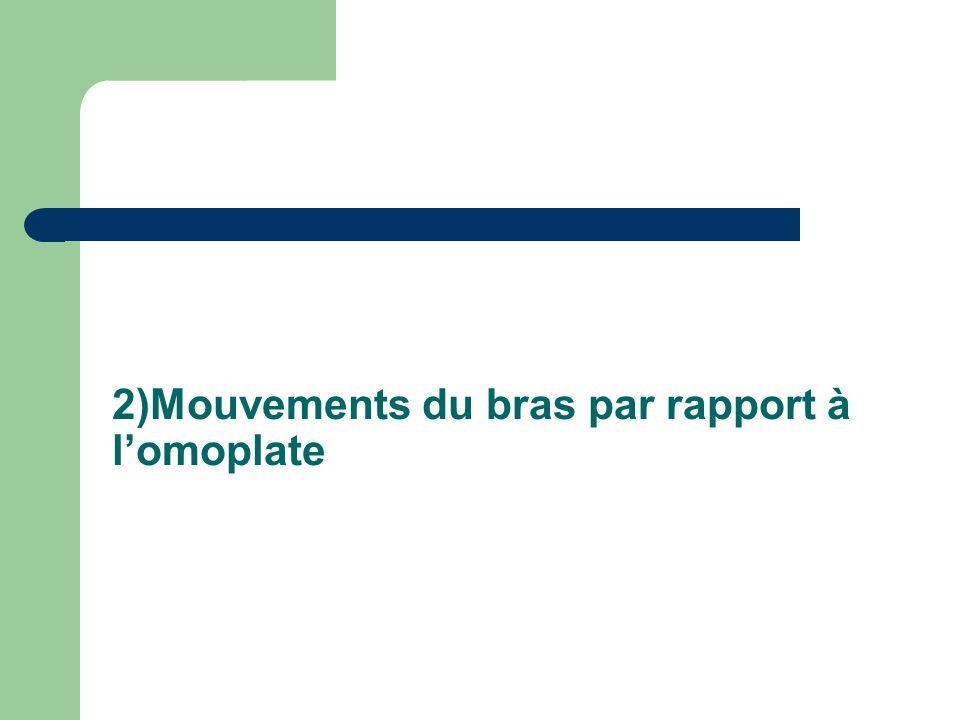 2)Mouvements du bras par rapport à l'omoplate