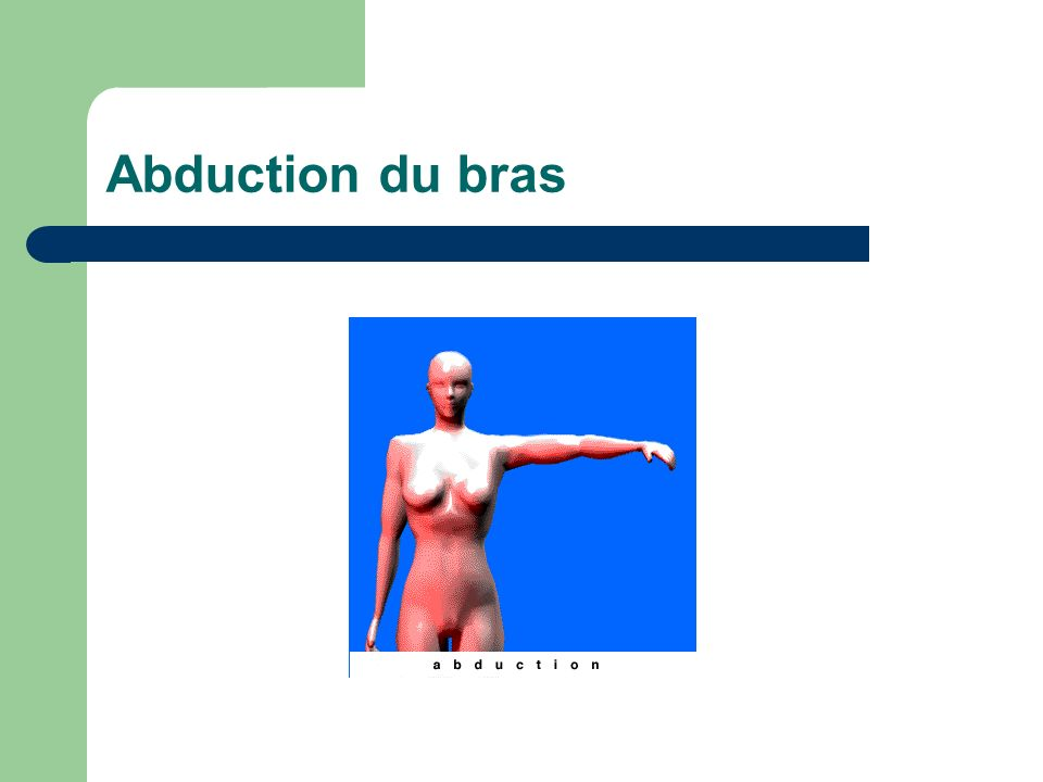 Abduction du bras