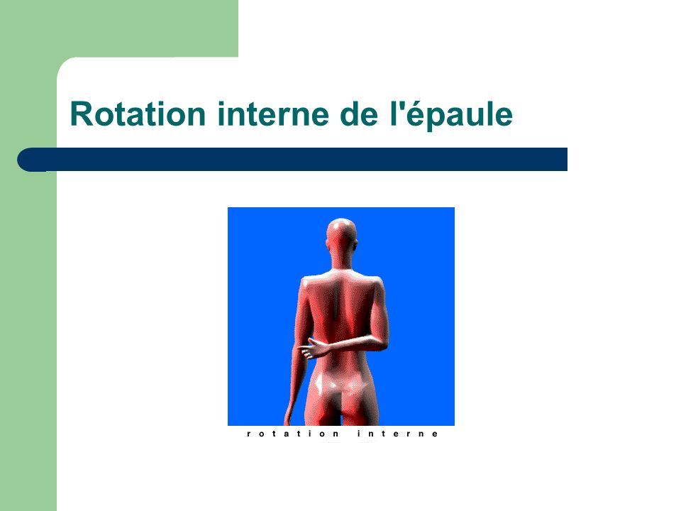 Rotation interne de l épaule