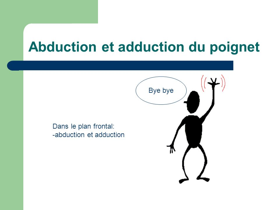 Abduction et adduction du poignet