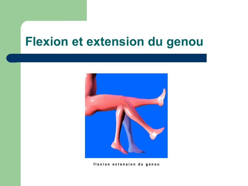 Flexion et extension du genou
