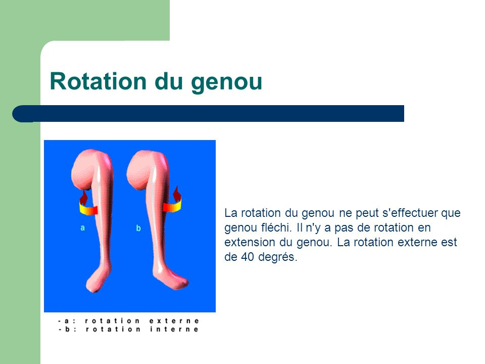 Rotation du genou