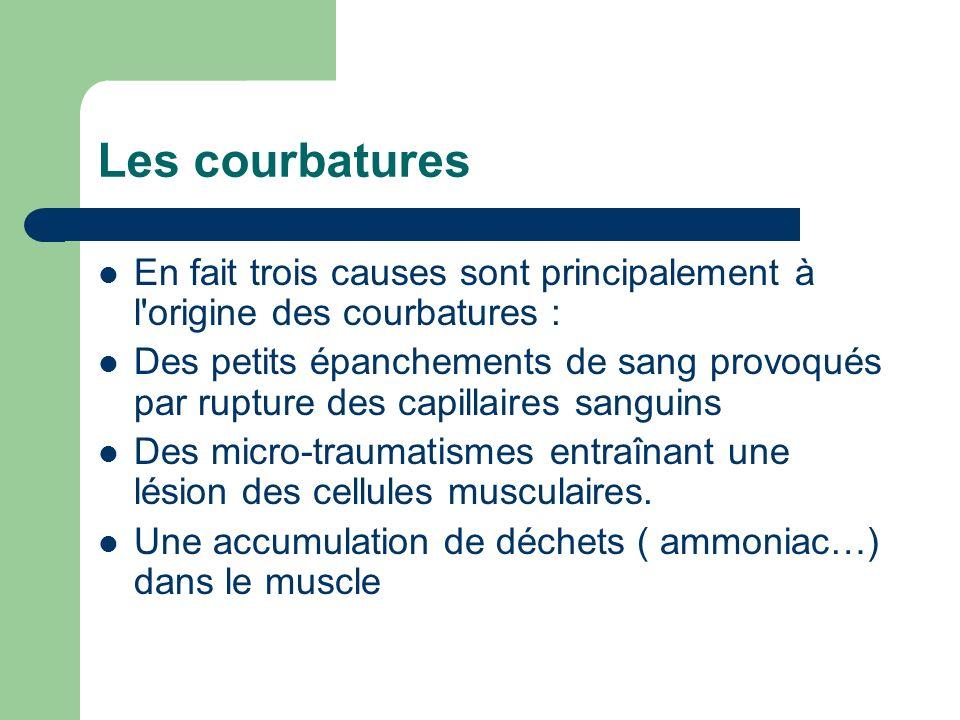 Les courbatures En fait trois causes sont principalement à l origine des courbatures :