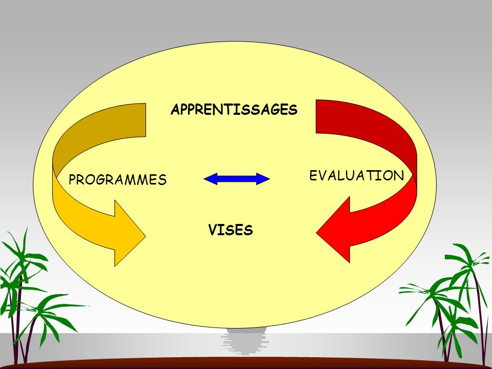 APPRENTISSAGES EVALUATION PROGRAMMES VISES