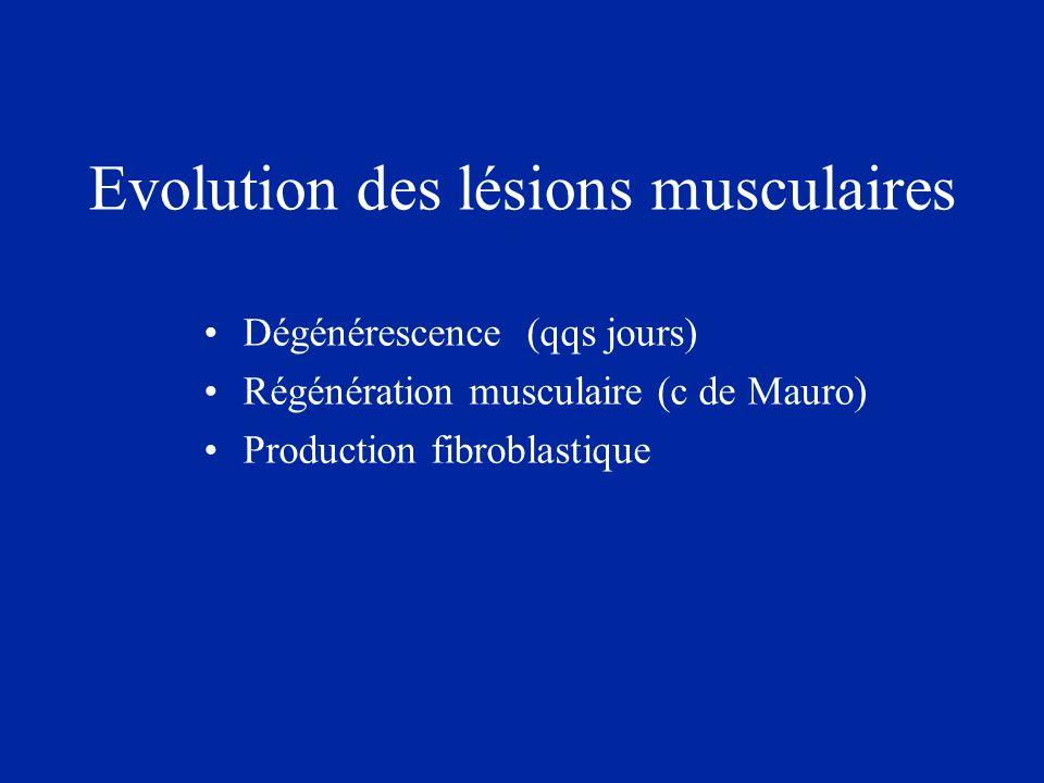 Evolution des lésions musculaires