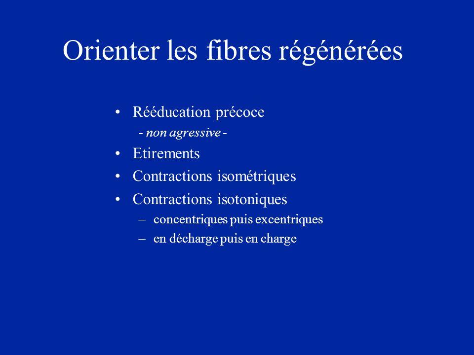 Orienter les fibres régénérées