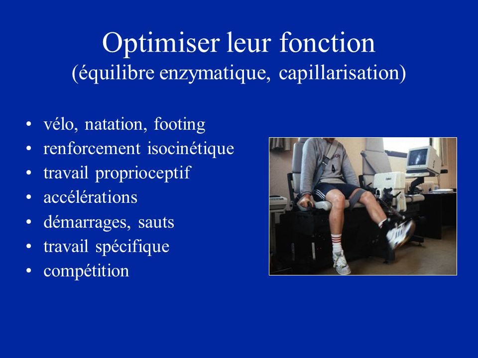 Optimiser leur fonction (équilibre enzymatique, capillarisation)
