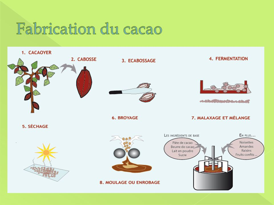 Fabrication du cacao