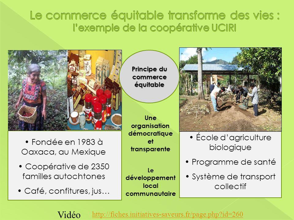 Le commerce équitable transforme des vies : l'exemple de la coopérative UCIRI