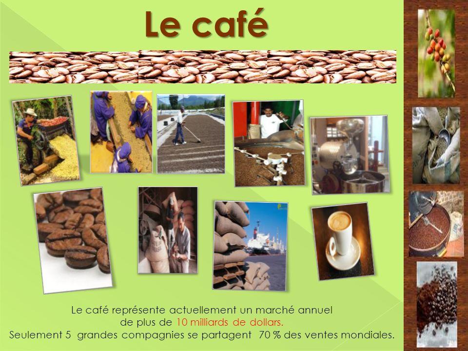 Le café Le café représente actuellement un marché annuel