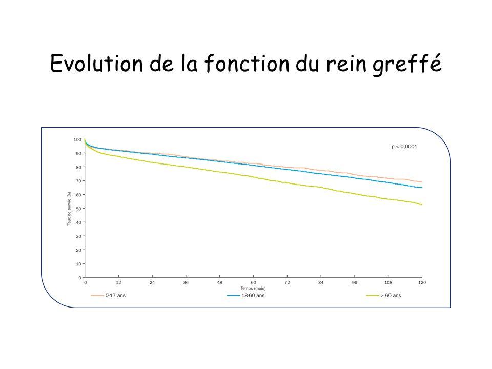 Evolution de la fonction du rein greffé