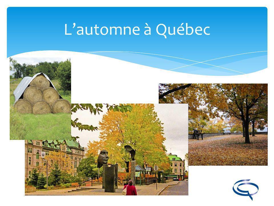 L'automne à Québec