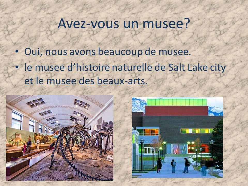 Avez-vous un musee Oui, nous avons beaucoup de musee.