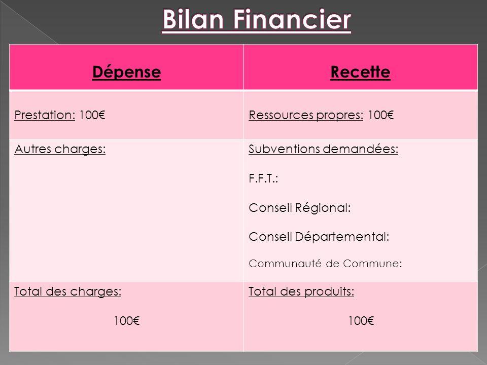 Bilan Financier Dépense Recette Prestation: 100€