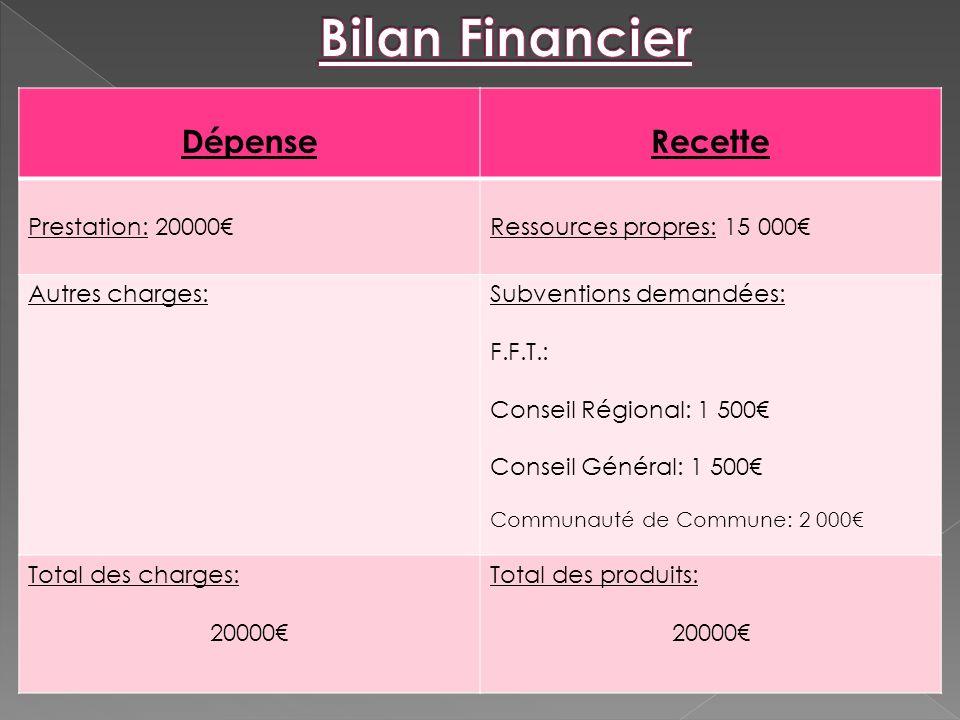 Bilan Financier Dépense Recette Prestation: 20000€