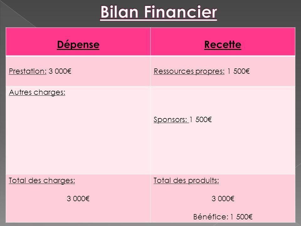 Bilan Financier Dépense Recette Prestation: 3 000€