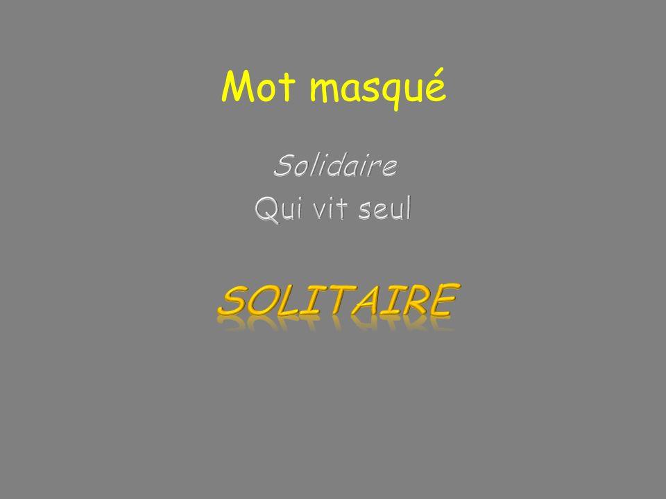 Mot masqué Solidaire Qui vit seul SOLITAIRE